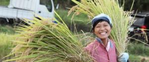 森の唱農園、パーマカルチャーのはぜかけ玄米
