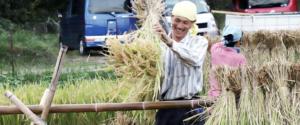 森の唱農園 はぜかけ、自然農法パーマカルチャーの玄米